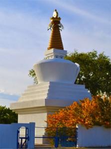 StupaOrangeTree